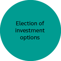 Election of investment options